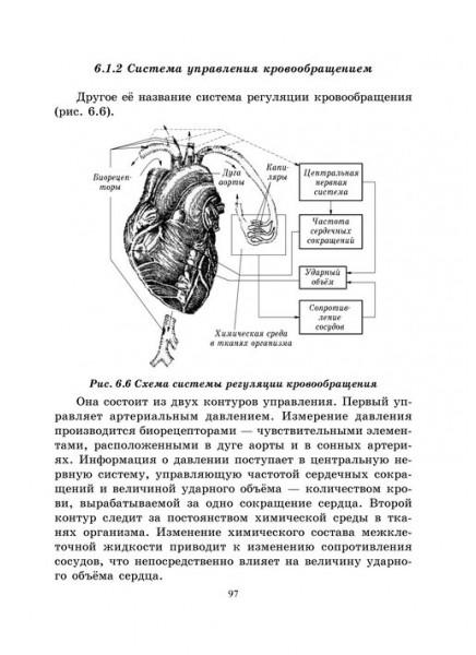 Основы кибернетики и управление в биологических и медицинских системах